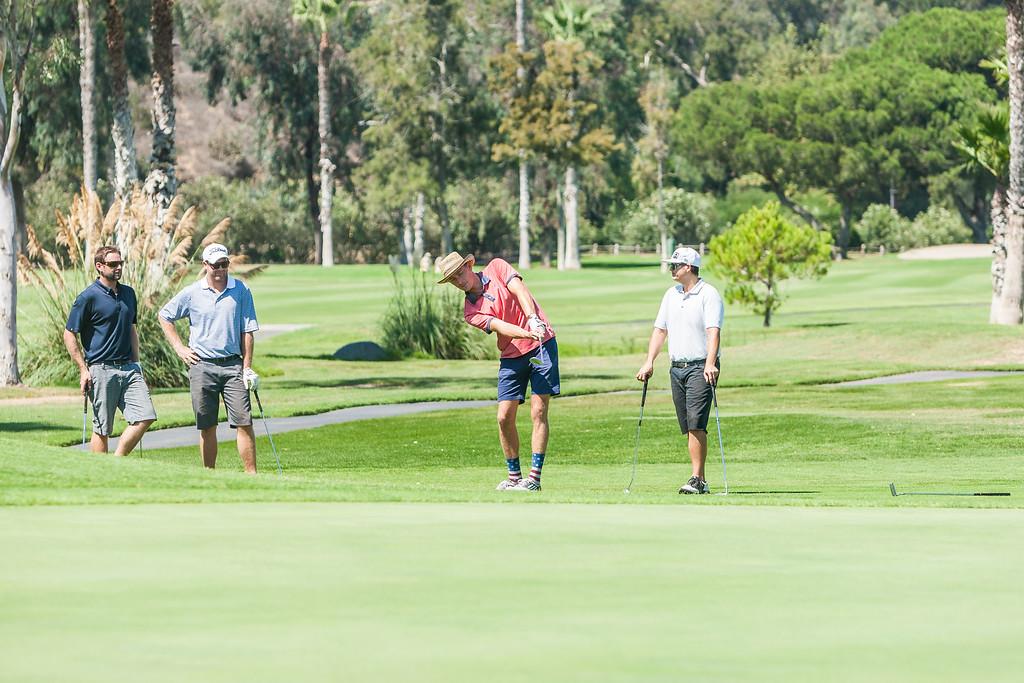 Golf173