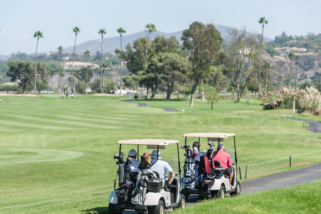 Golf225