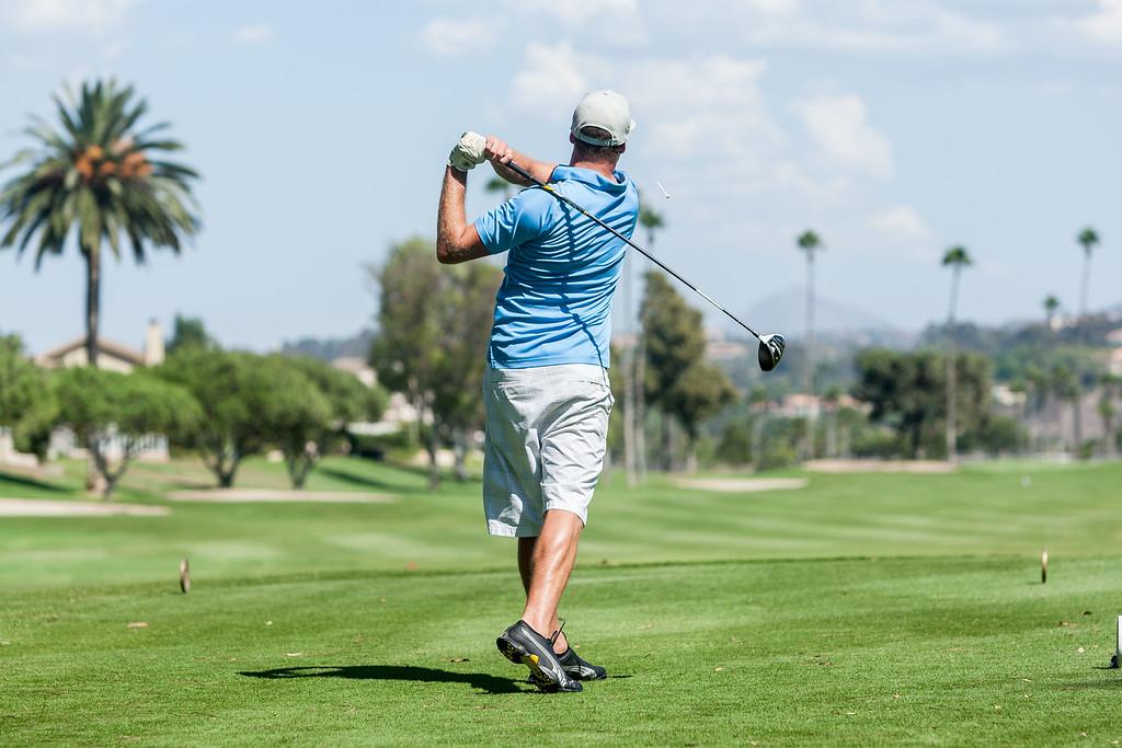 Golf238