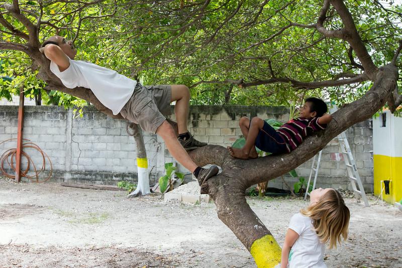 Me playing with Daniella, Neighbor Brian in the nanci tree.