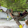 Me playing with Daniella, Neighbor Brian in the nanci tree.