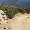 Wardy just laughed when he saw this. Me...I walked on ahead to see how the trail had changed!
