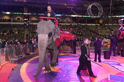 Circus Spectacular February 13, 2016