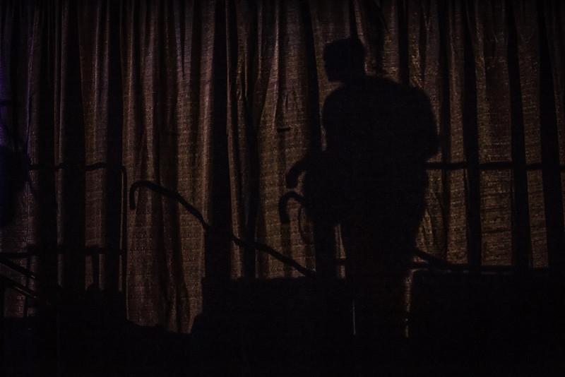 Shadow Curtain