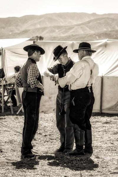 tom's farm civil war847f