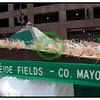 20110317_1451 - 1391 - 2011 Cleveland Saint Patrick's Day Parade