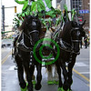 20120317_1352 - 0666 - Parade