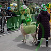 20190317_151949 - 0957 - Saint Patrick's Day Parade