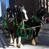 20100317_1419 - 1033 - Parade