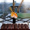 2012.01.21 Susan Weider Rosewood Sandhill 50th