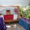 2014.06.07 Children International Teresa & Doug's Garden Party