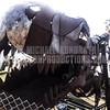 Coachella_042113_Kondrath_0223