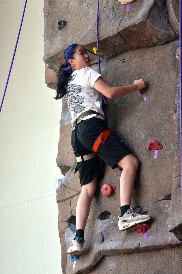 Climbing Wall5863_016