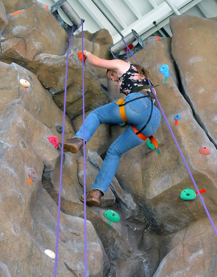 Climbing Wall6032_036