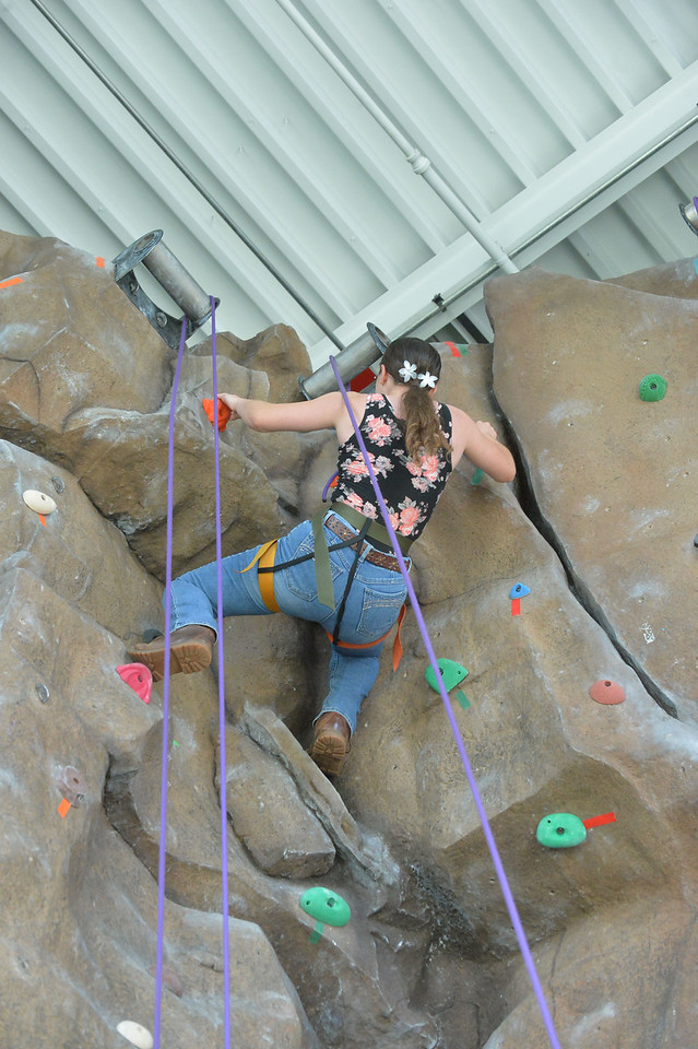 Climbing Wall6009_033