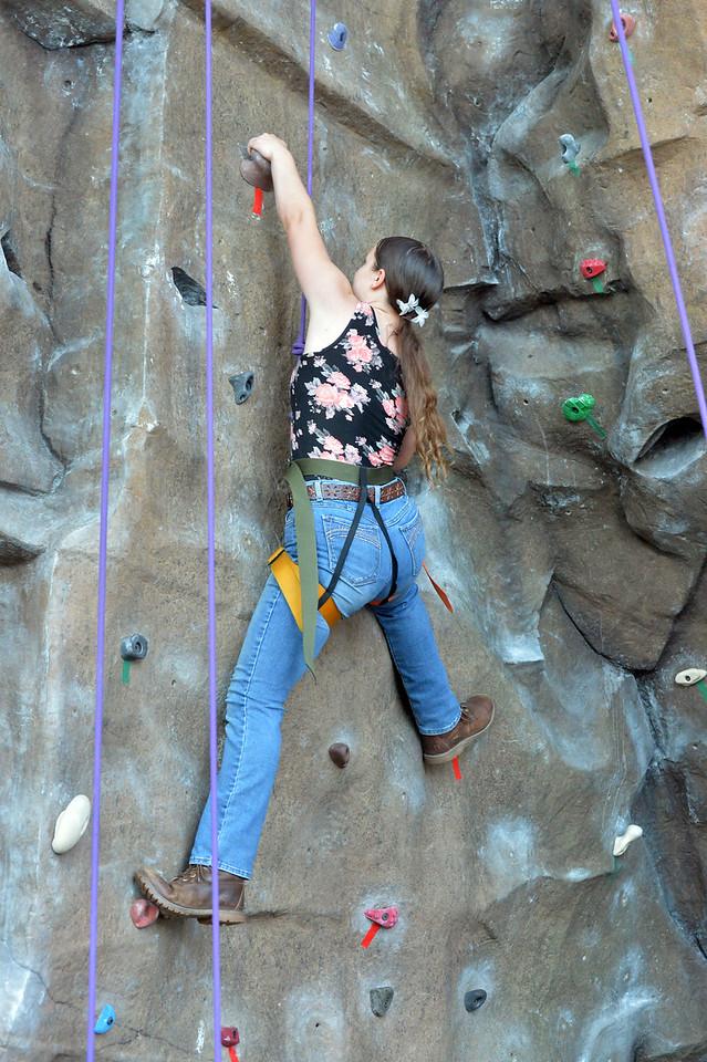 Climbing Wall5940_024