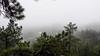 Fog Outside of Boulder