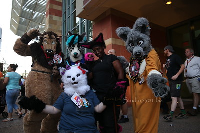 The Furries