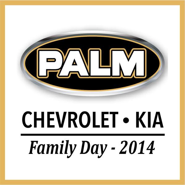 1 1 1 1 2014 Palm Kia