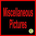 A 17CMHPAM MISC-11001