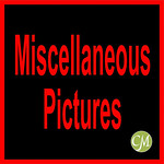 A 17CMHPAM MISC-11002