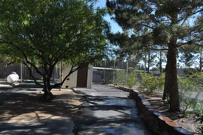 06-02-2011-vegas-home-search-136