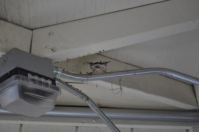 06-02-2011-vegas-home-search-099