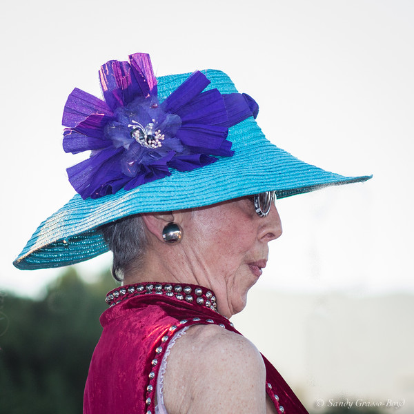 Concert in the Park, Flamboyant Lady