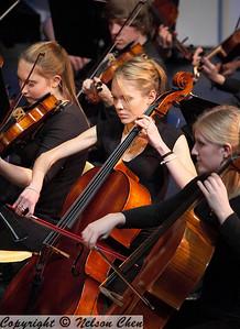 Orchestra_290
