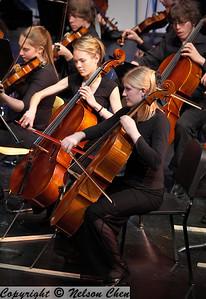 Orchestra_260