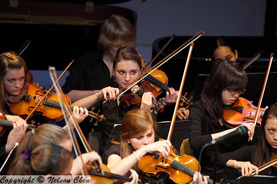 Orchestra_285
