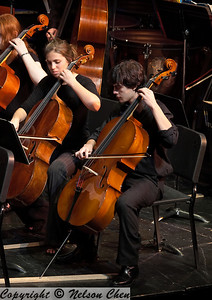 Orchestra_266