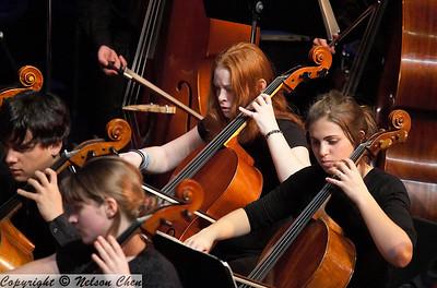 Orchestra_311