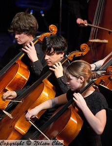 Orchestra_294