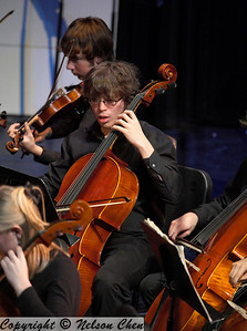 Orchestra_293