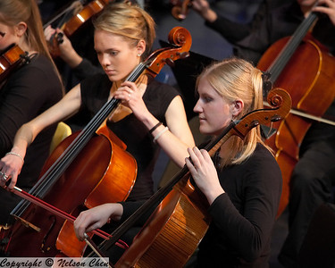 Orchestra_261