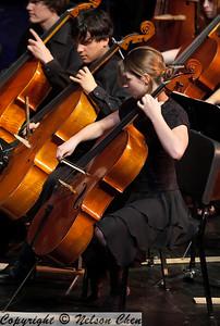 Orchestra_267