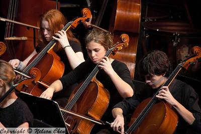 Orchestra_265