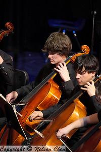 Orchestra_295