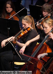 Orchestra_291