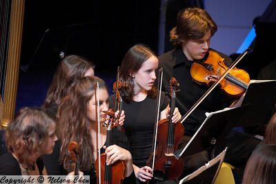 Orchestra_288