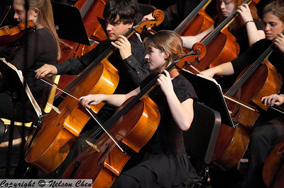 Orchestra_438