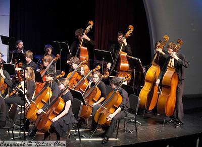Orchestra_443
