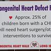 Congenital Heart Walk Long Island 5-20-18-625