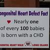 Congenital Heart Walk Long Island 5-20-18-020