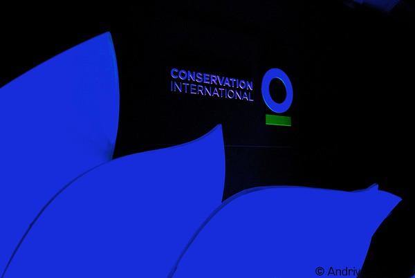 CINYC2010.jpg