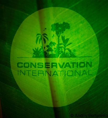 ConcervationInternationalNYC 4.jpg