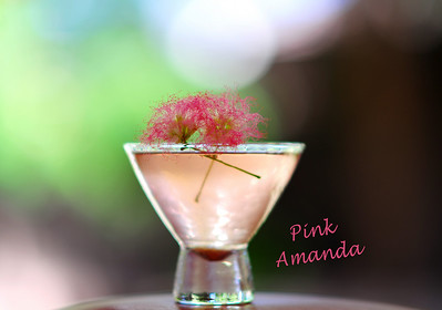 "Photograph of ""Pink Amanda Martini"" made with iS Vodka especially for Amanda Lepore. A ""Pink Amanda Martini"" is made with iS Vodka, Sprite, Fresh Limejuice, and a Dash of Organic Berry Juice for color. Garnish with a fresh sprig of Mimosa. * ""Pink Amanda Martini""  2.5 oz. ISVodka 3 oz. Sprite 1 oz. Lime Juice Dash of Organic Berry Juice Sprig of Mimosa  Combine ISVodka, Sprite and lime juice in a shaker. Add ice, shake well. Strain into a martini glass. Add a dash of berry juice for color. Garnish with a sprig of fresh Mimosa. Tickles you pink and is uniquely fun! * IS Vodka http://www.isvodka.com is a super-pure, ulta-premium vodka distilled 7 times, mixed with glacier water from the land of ice and snow - Iceland."