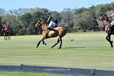 Sarasota Polo Jan 2015