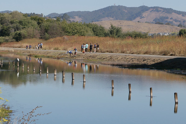 Corte Madera Marsh Costal Cleanup